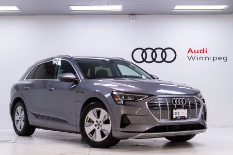2019 Audi e-tron Progressiv w/Driver Assist & Convenience Packages *DEMO*